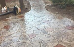 pond spots stamped concrete pathway